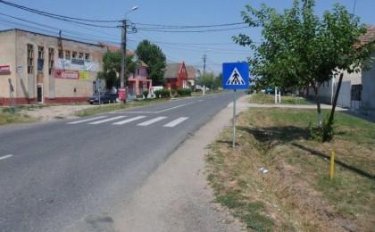 Sanandrei