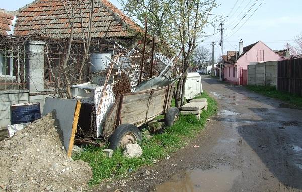 cartiere Timisoara