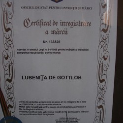 certificat inregistrare pepeni gottlob
