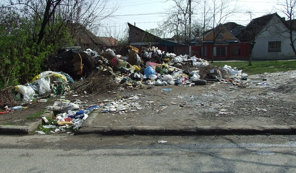 gunoi Timisoara