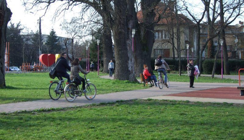 Imagini pentru biciclete in parc