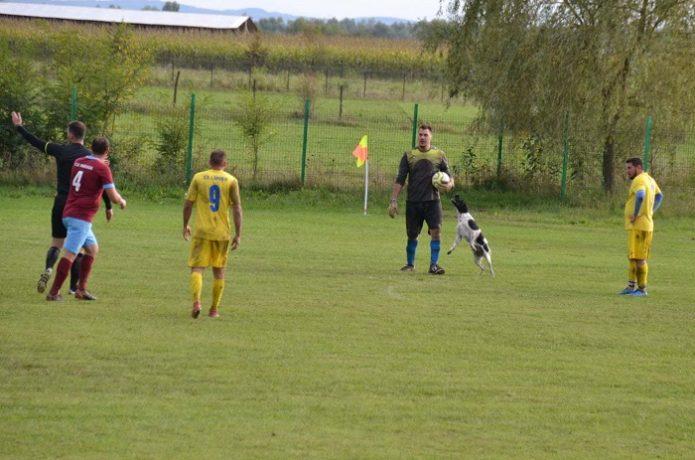 Un meci din Liga a 4-a, întrerupt de un cățel supărat pe portarul advers care trăgea de timp