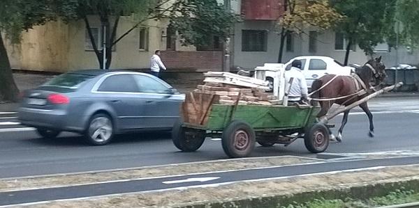 caruta trafic