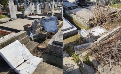 Jale mare în două cimitire din Timişoara (foto