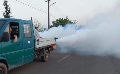 Video! Tunurile pe țânțari, într-o comună din Timiş
