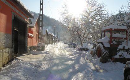 Odaia de lângă cer! Satul timişean care nu a plecat de-acasă (galerie foto)