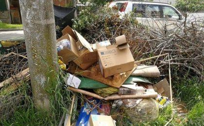 Noua administrație a Timișoarei refuză să facă lumină într-un scandal iscat pe tema salubrizării orașului