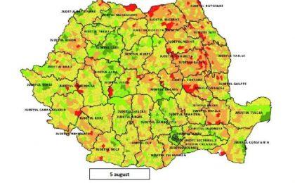 Harta vaccinării în România: Dumbrăvița pe primul loc, Giroc pe șase