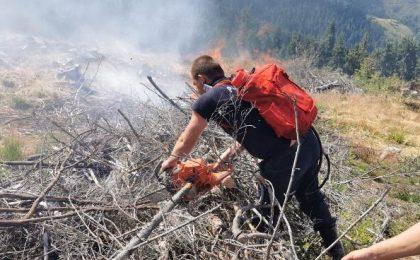 Incendiu uriaș în vestul țării. Patru hectare de teren sunt afectate