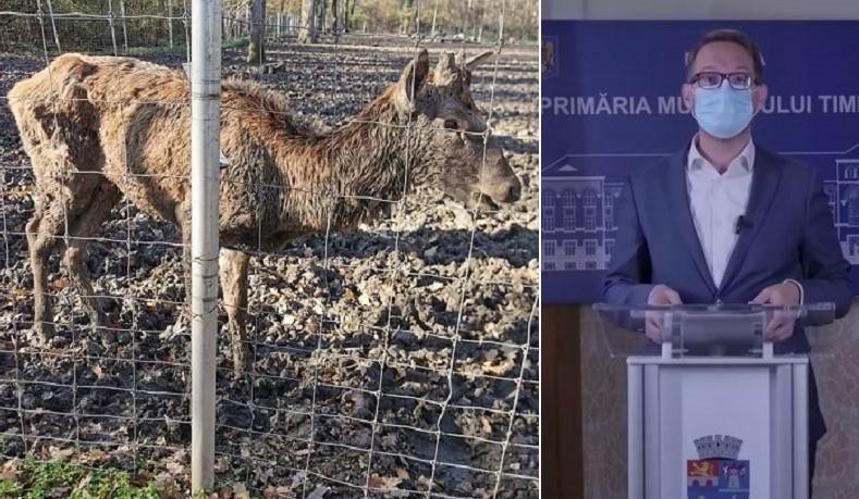Dominic Fritz anunță închiderea Grădinii Zoologice din Timișoara: Îngrijirea animalelor nu este la standarde