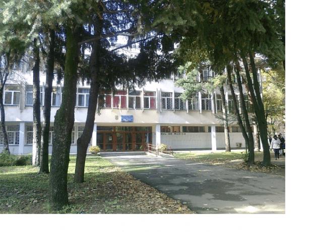 """Și elevii de la Liceul de Artă """"Ion Vidu"""" vor învăța de acasă. Cursurile se mută în online"""