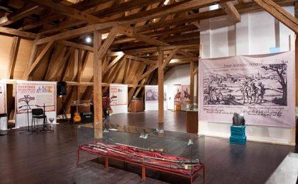 Consiliul Județean Timiș a introdus biletul unic pentru muzeele sale
