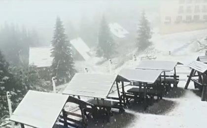 Imagini de poveste. A nins pe Muntele Mic! Video