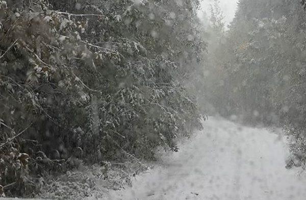 Iarna loveşte în plină toamnă: ANM a emis alertă de ninsori și lapoviță