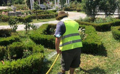 Administrația Timișoarei a cerut remedierea urgentă a problemelor din Parcul Rozelor