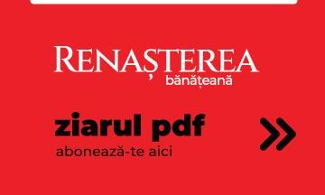 Renasterea PDF