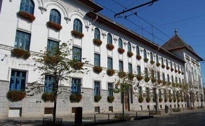 Un nou joc de societate la Timișoara: uite șeful, nu e șeful