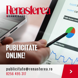 Publicitate Online