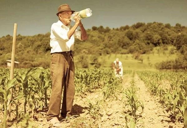 Moștenitorii rentierilor agricoli sunt așteptați la APIA