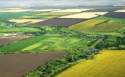 Harta agricolă: Bărăganul şi Banatul sunt lideri la producţia de cereale