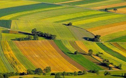 Străinii, interesați de terenurile din România. Cele mai multe hectare le au în Timiș, Brașov și Arad