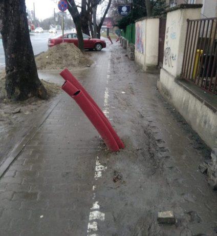 Jaloane pe unele trotuare din Timişoara
