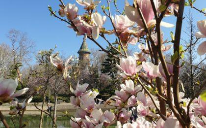 De Paști vine vara în Timișoara și în tot Banatul!
